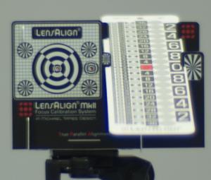Noctilux-M F1 50mm Test